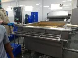 Raw Shrimp & Fish Washing Machine