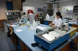 Food Testing Lab Setup Services