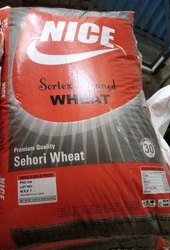 Mp Wheat