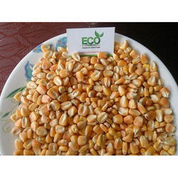 Animal Feed Yellow Corn