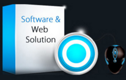 Web Solution Service