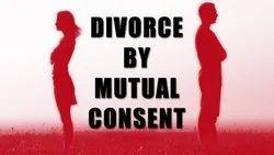 Matrimonial Family Litigation Legal Services