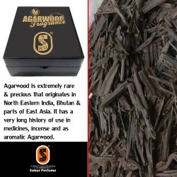 Agarwood Nagalend.SP-008