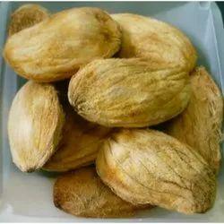 Mangifera Indica Seed