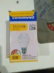 Luminous LED Bulb