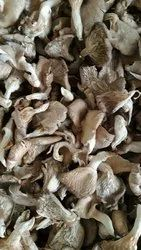 Pan India Dry Oyster Mushroom, Packaging Type: Carton, Packaging Size: 5 Kg