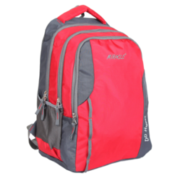 Nylon Grey Red Laptop Backpack
