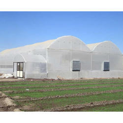 Agricultural Greenhouse & Polyhouse