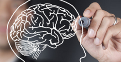 Neurosurgery And Neurology
