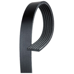 V Ribbed Belt