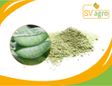 Aloe Vera Spray Dried Powder 100x
