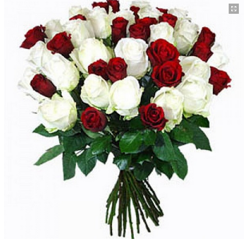 Red white rose bunch flower at rs 799 pack flower bunch id red white rose bunch flower mightylinksfo Gallery