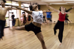 aerobics exercise and dance exercise service provider