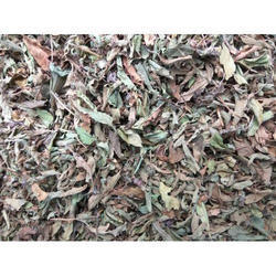 Junglee Dried Tulsi