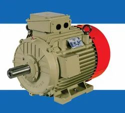 Flame Proof Series Low Voltage Motors