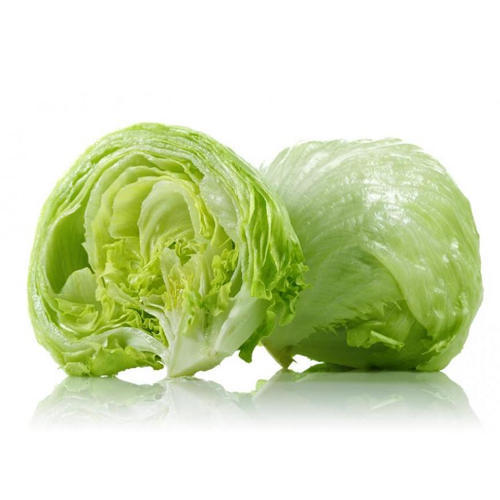 iceberg-lettuce-500x500.jpg