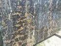 Golden Portoro Waterfall Marble