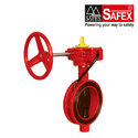 Butterfly Valve with ISI / FM Mark