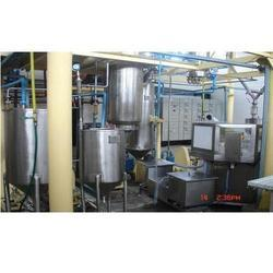 Fruit Processing Plant Consultancy Services