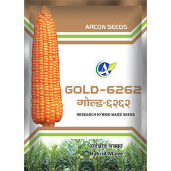 Gold Research Maize Seed
