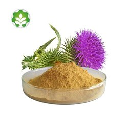 Green Heaven Milk Thistle Extract, Pack Size: 5 kg, Packaging Type: Polybag