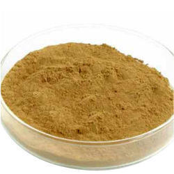 Kaucha Beej Extract Powder