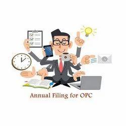 Company Annual Tax Filling Service