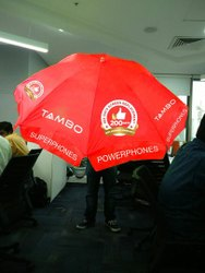 Promotional Foldable Umbrella