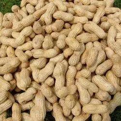 Groundnut, Packaging Type: Sacks