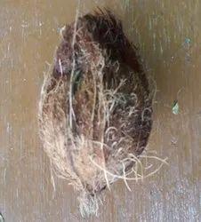 Medium Size Semi Husked Fresh Matured Coconut