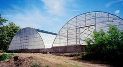 Green House Structure Film
