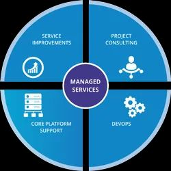 Big Data Managed Services