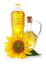 Edible Oil Project Reports