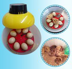 Mini Egg Incubator- 8 Eggs