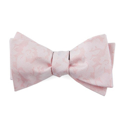 Casual Bow Tie