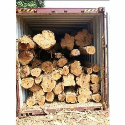 Brown 3 - 8.5 Feet Panama Teak Wood Logs, Grade: A Grade