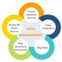 Database Management Service Provider
