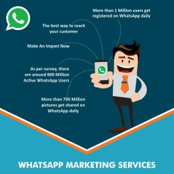 Bulk Whatsapp Marketing Services