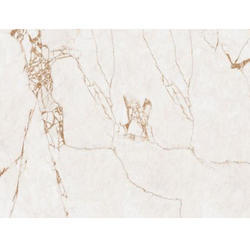 Vishwas Ceramica Ceramic 2047 VE Glossy Series Floor Tiles, Size: 600 x 1200mm