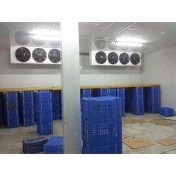 Ice Cream Cold Storage Rental Service