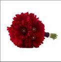 Red Gerbera Beauty Gbm04 Flower