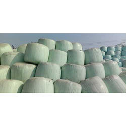 Forage Maize Green Silage Cattle Feed, Packaging Type: Bales, 100 Kg