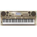 Professional Electronic Keyboard