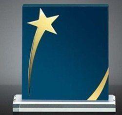 Rectangular Star Acrylic Trophy