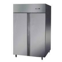SRE Swing Door Vertical Deep Freezer, Medium, Capacity: 400 Litre