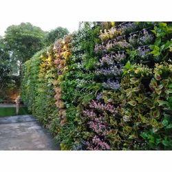 Green Bio Wall Services