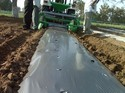 Agriplast Mulch Black And Silver Film 1m Popular