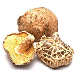 Dried Mushroom in Guwahati - Latest Price & Mandi Rates from