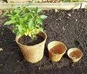 Coir Garden 4 Inch Coir Pot, Coco Basket Large Size Seedling Cups for Plants