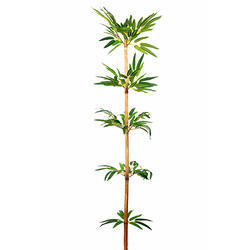 Bamboo Shoot Artificial Plant